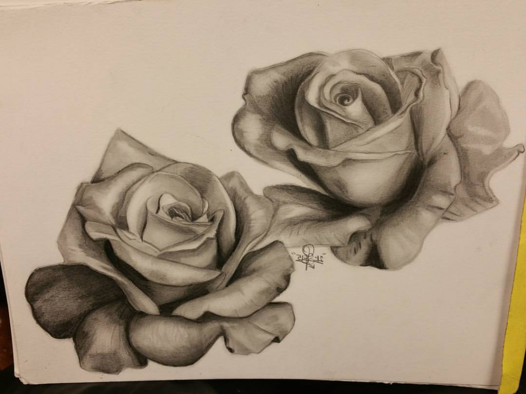 1024x768 Realistic Rose Pencil Sketches Roses Pencil Drawing Best Photos
