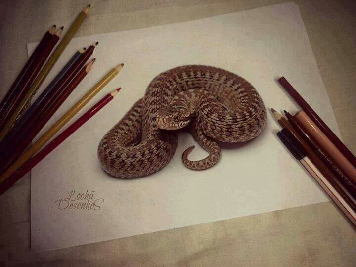 Realistic Snake Drawing At Getdrawings Com Free For Personal Use