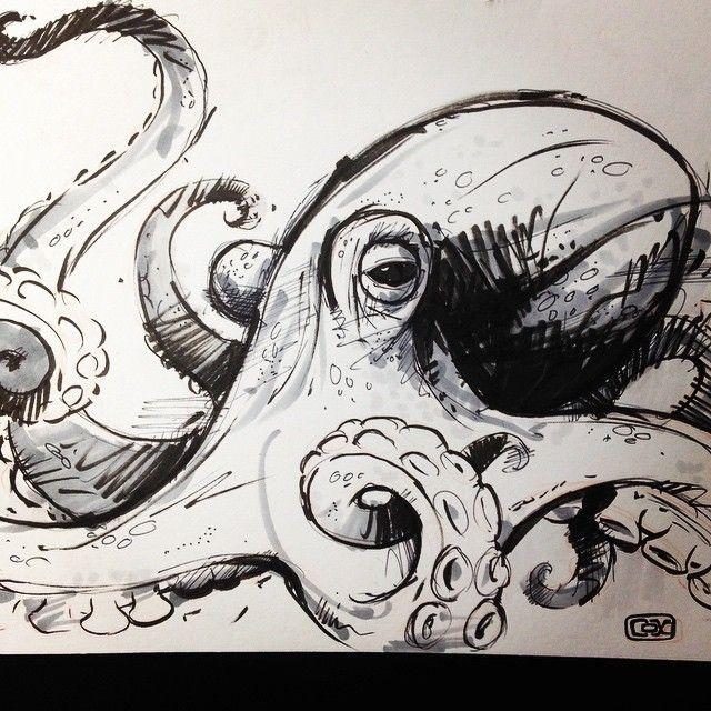 640x640 Bildergebnis für sketch octopus Tattoos Pinterest Sketches