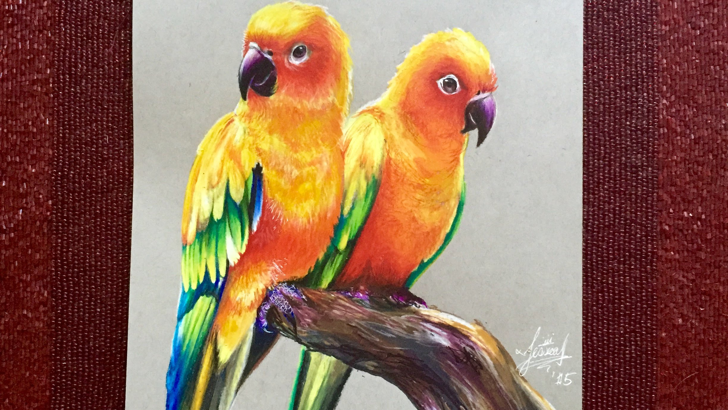 2448x1379 Realistic Drawing Of Parrots (Sun Parakeets)