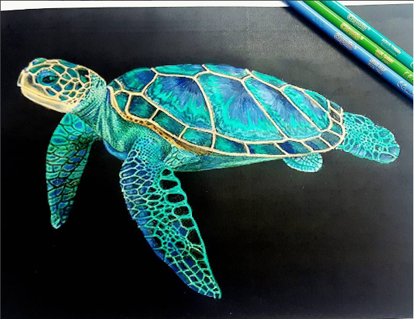 Realistic Turtle Drawi...