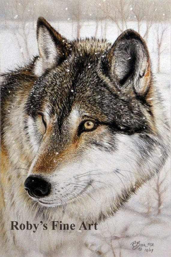 570x855 Fancy 9 Best 3 Realistic Wolves Amp Cartoon Wolf Drawing Tutorials