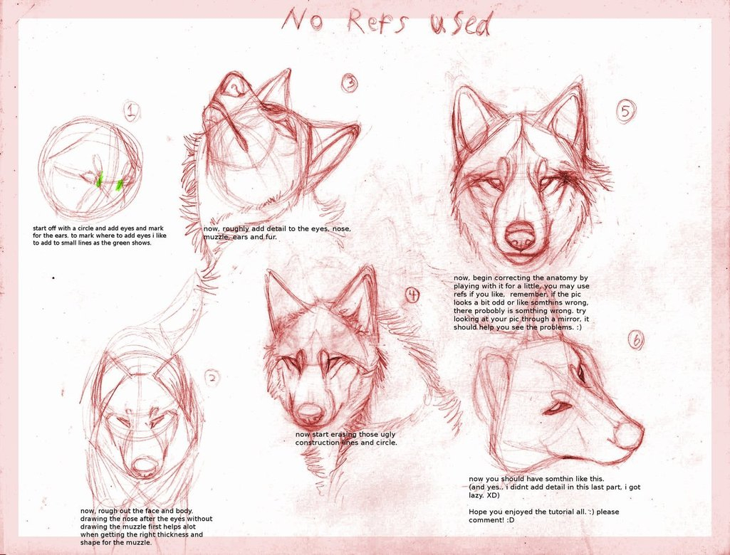 1025x780 Realistic Wolf Drawing Tutorial Wolf Drawing Tutorial By ~b