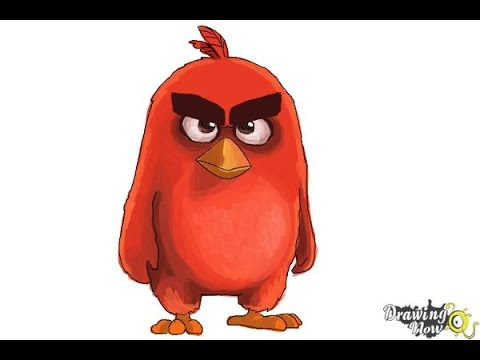 480x360 How To Draw Red From The Angry Birds Movie