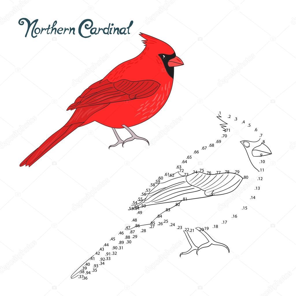 1024x1024 Educational Game Connect Dots Draw Cardinal Bird Stock Vector