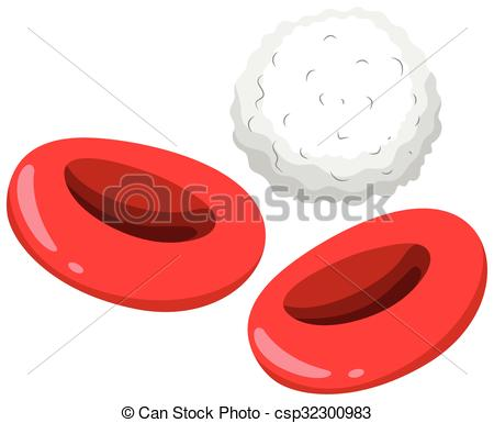 450x385 Red And White Blood Cells Illustration Vector