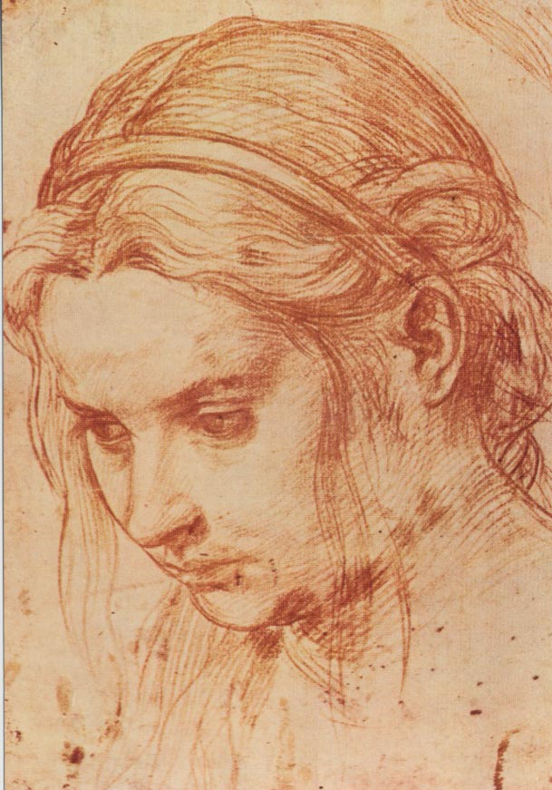 609x871 Andrea Del Sarto, 1486 1530, Florence, Circa 1520