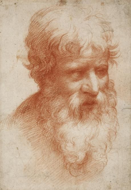 460x665 Red Chalk Drawings Of The Italian Renaissance