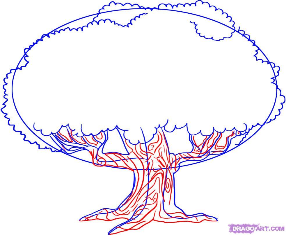 983x809 How To Draw An Oak Tree Step 3 1 000000007633 5.jpg Pixels