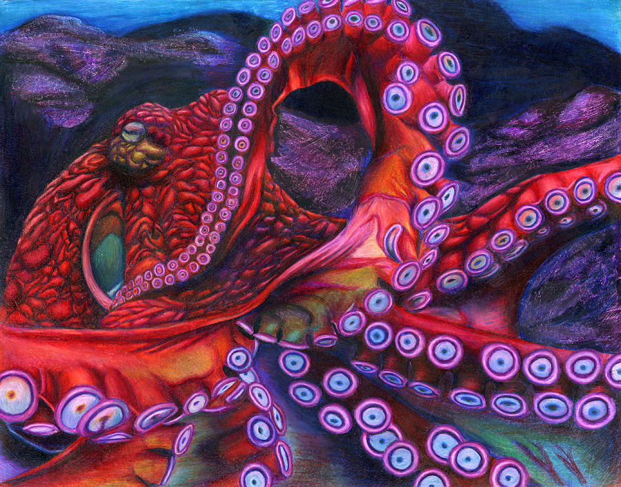 900x705 Giant Pacific Octopus By Erick Villegas Drawing By California