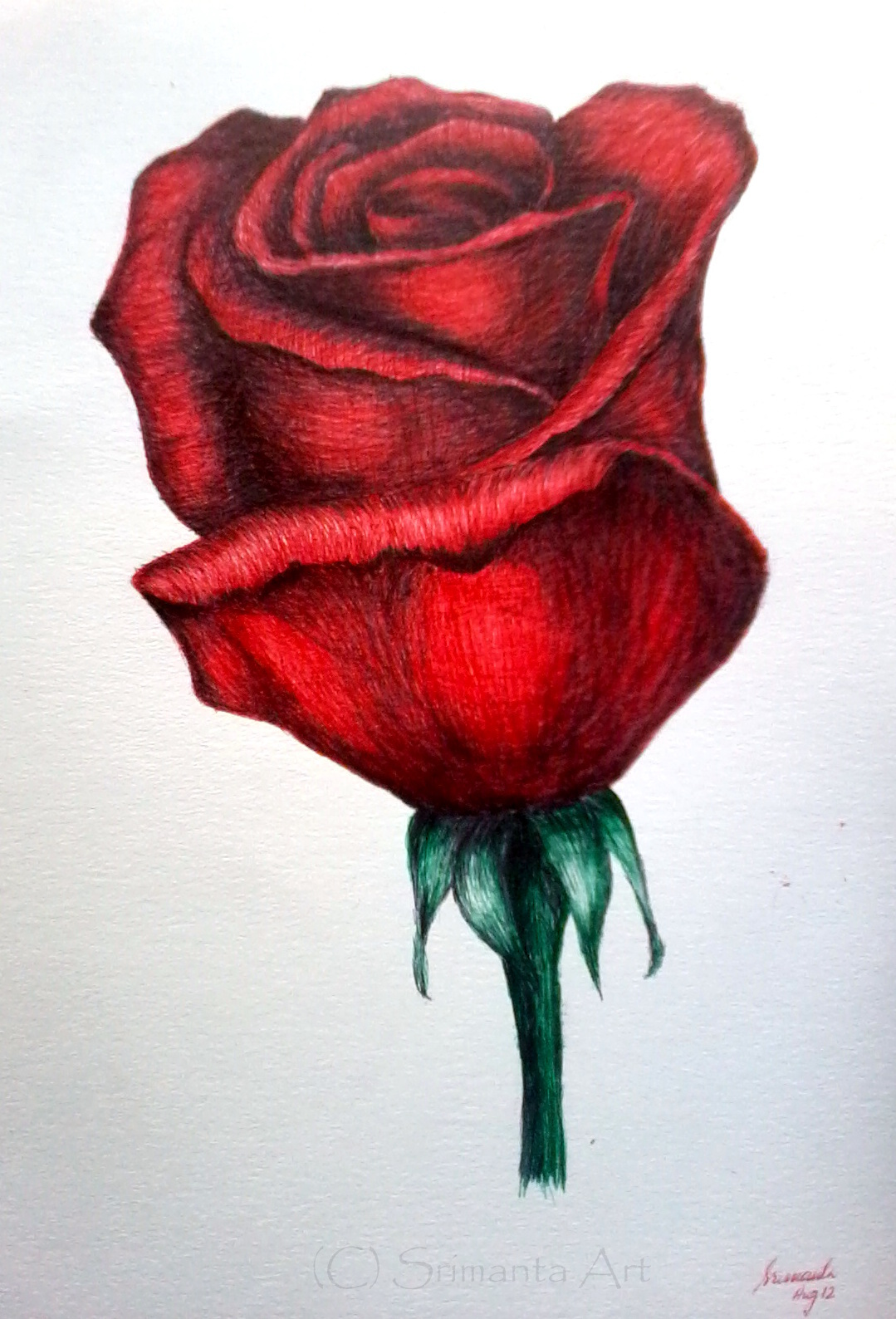 1079x1588 Cliserpudo Black And Red Rose Drawing Images