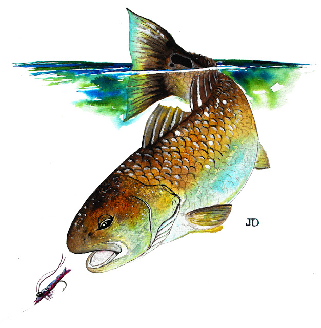 626x640 A Year On The Fly The Redfish Painting