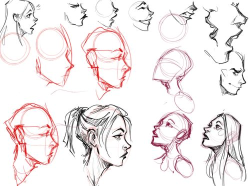 500x372 57 Best Reference Type D 4 Images On Drawing Ideas