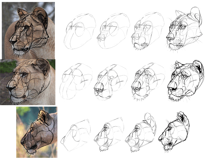 700x543 How To Draw From Imagination Beyond References