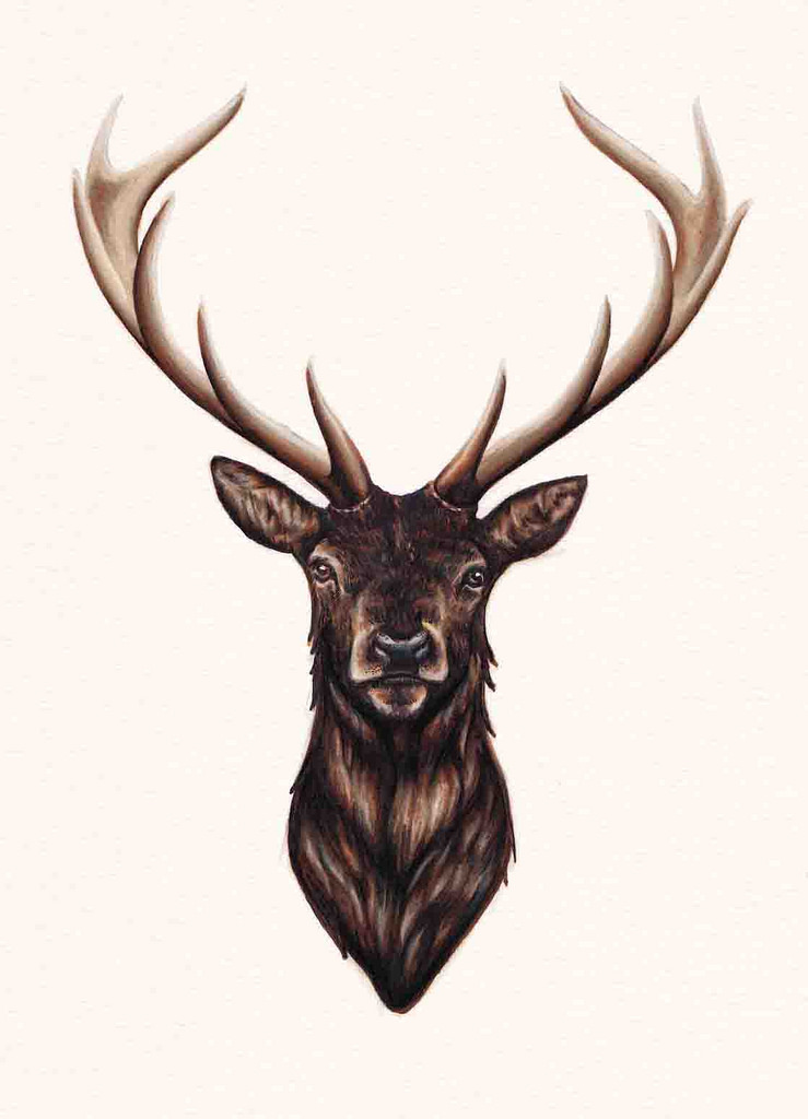 739x1024 Stag Antlers, Darkness And Stag Head