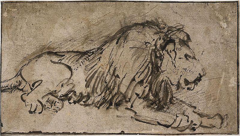 800x454 Rembrandt A Lion.jpg