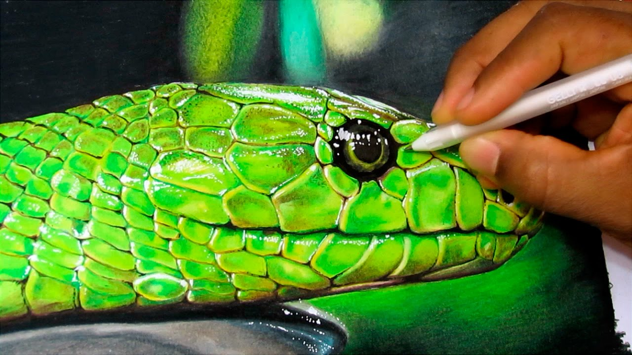 1280x720 How To Draw A Realistic Snake Time Lapse