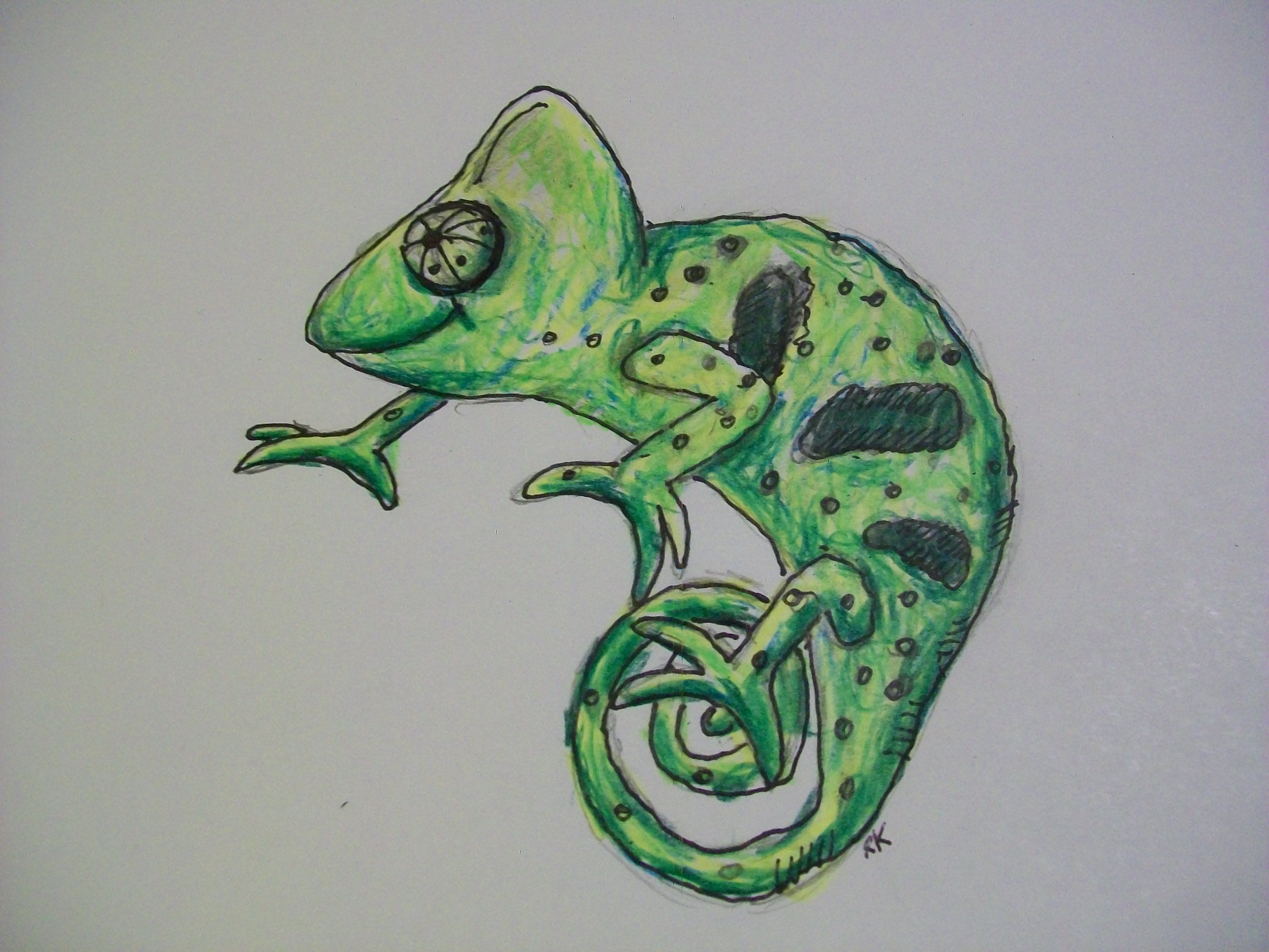 3472x2604 A Cute Reptile Drawing In Colored Pencil My Artwork