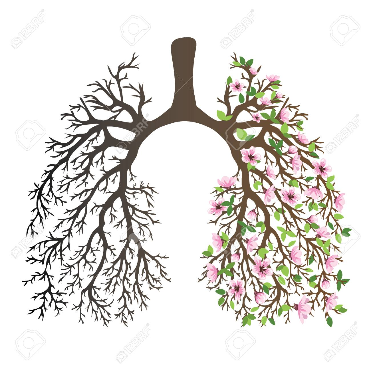 1300x1300 Human Lungs. Respiratory System. Healthy Lungs. Light In