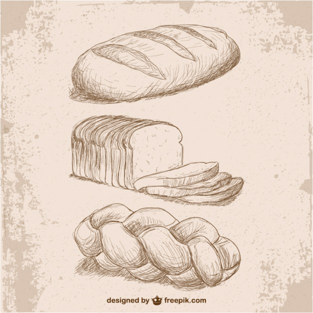 626x626 Retro Style Bread Drawings Vector Free Download