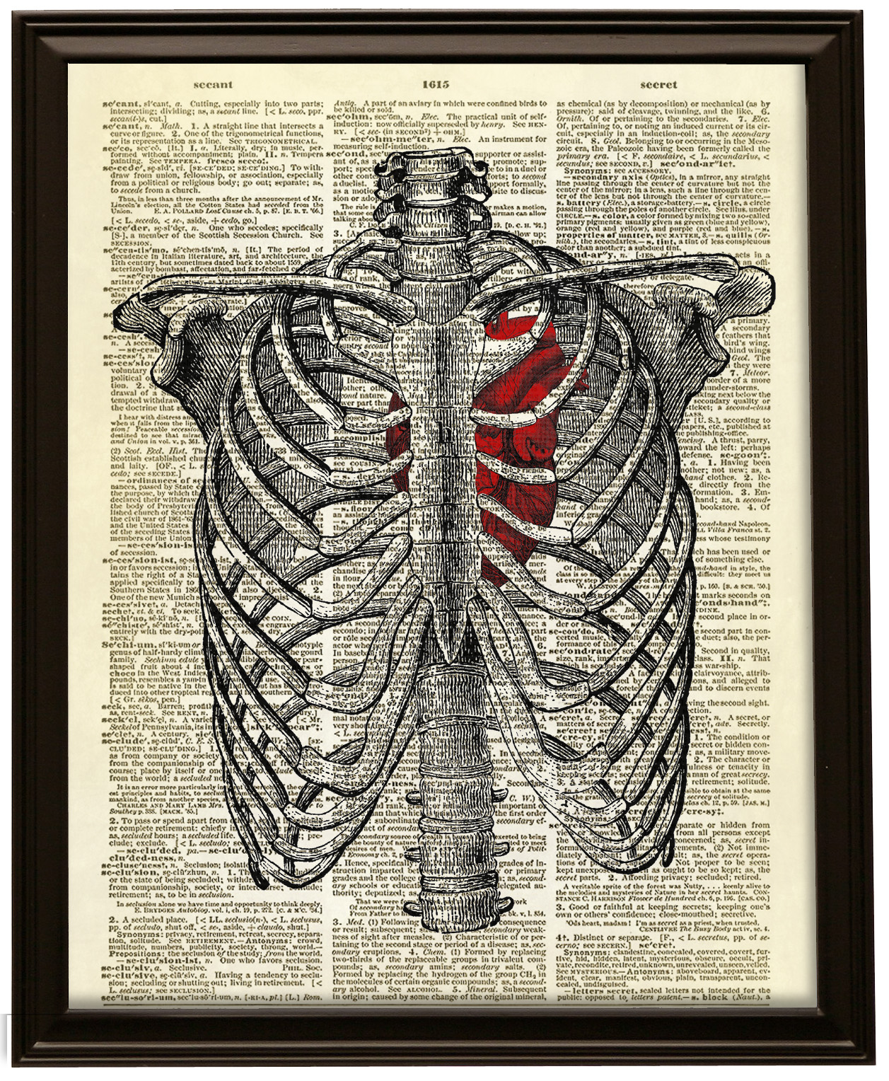 1257x1528 Human Heart Inside Rib Cage Dictionary Art Print No. 9 Altered