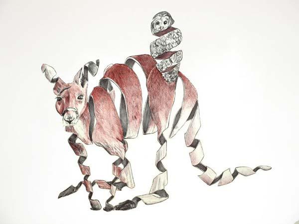 600x450 Animal Drawings By Jaume Montserrat