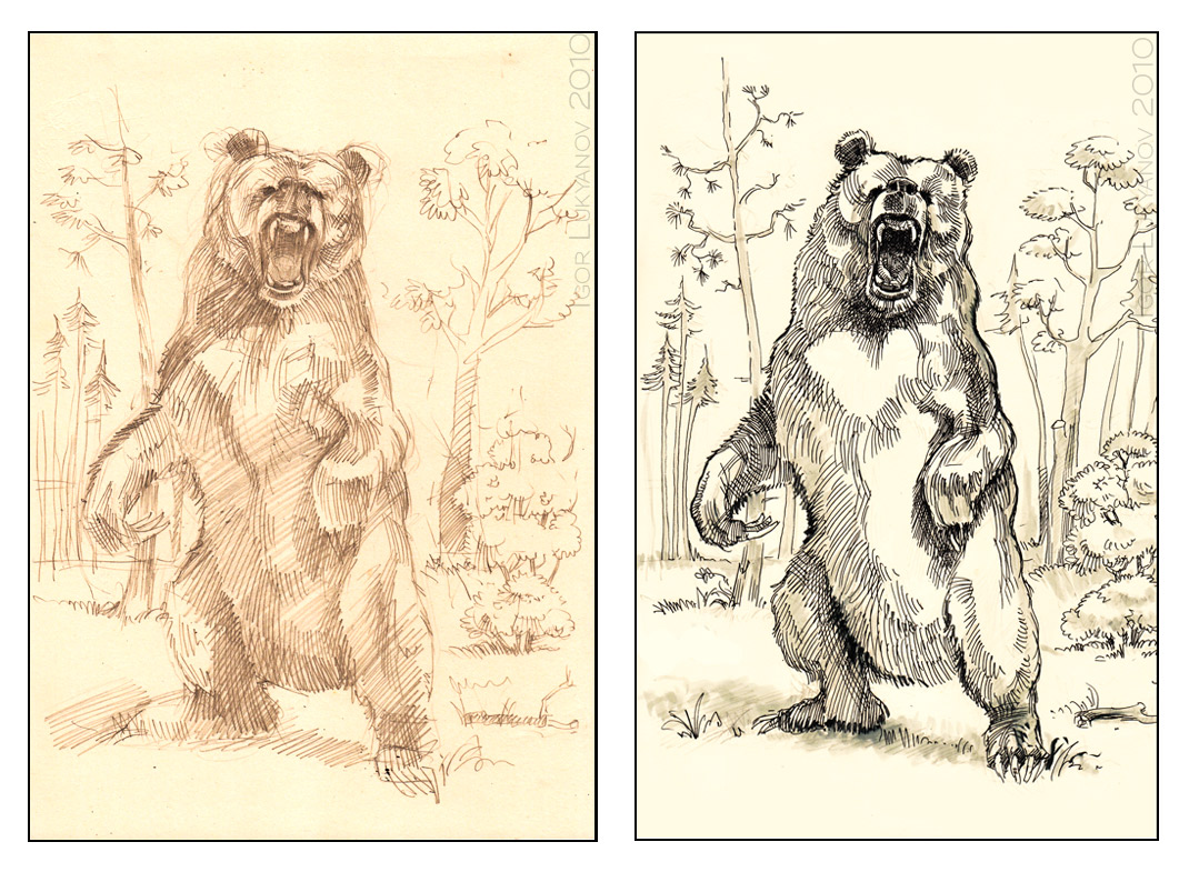 1079x785 Sketch Of A Scary Roaring Bear