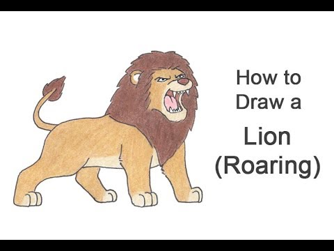 480x360 How To Draw A Lion Roaring (Cartoon)