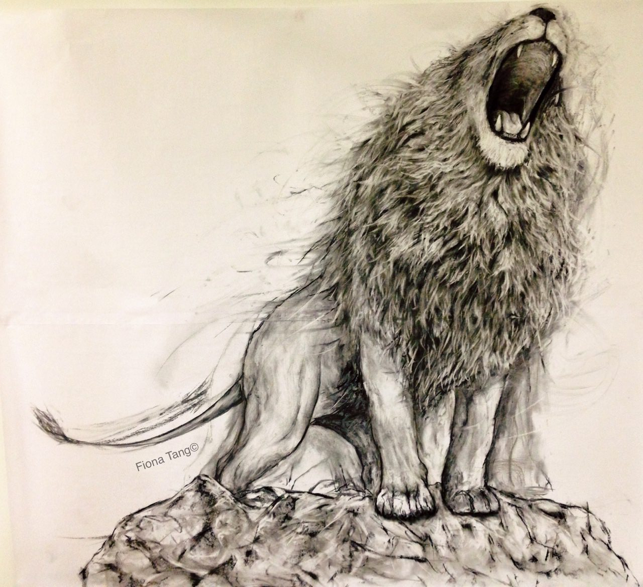 1280x1168 Pencil Sketch Of Roaring Lion Realistic Drawings Of Lions Roaring