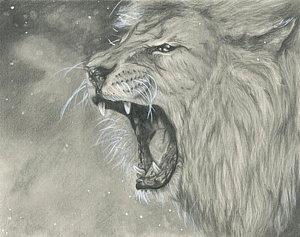 300x237 Roaring Lion Drawings Fine Art America