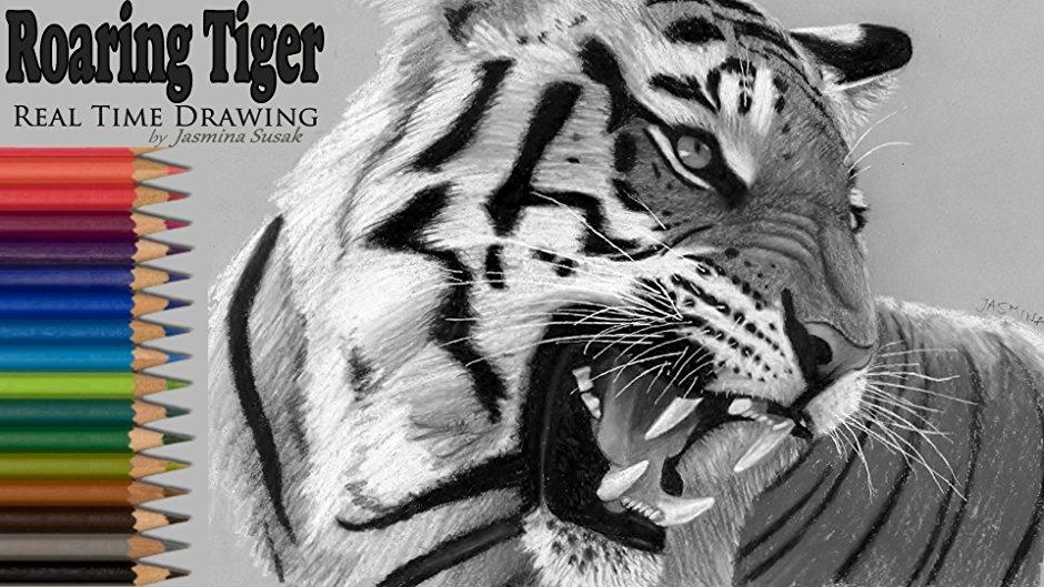 940x529 Roaring Tiger Real Time Drawing By Jasmina Susak