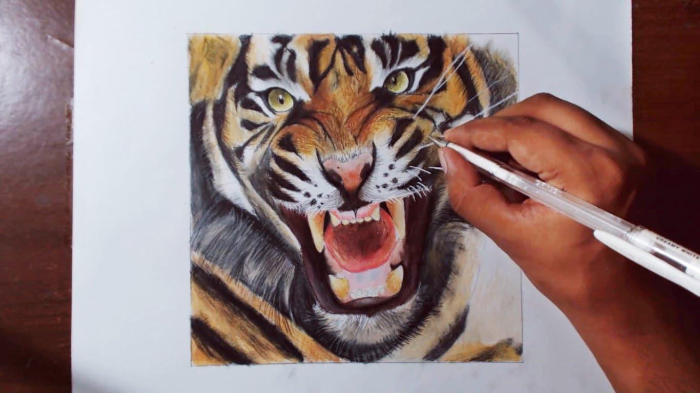 1366x768 Drawing A Tiger