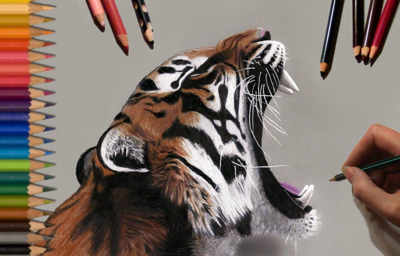 1500x961 Speed Drawing Tiger Jasmina Susak