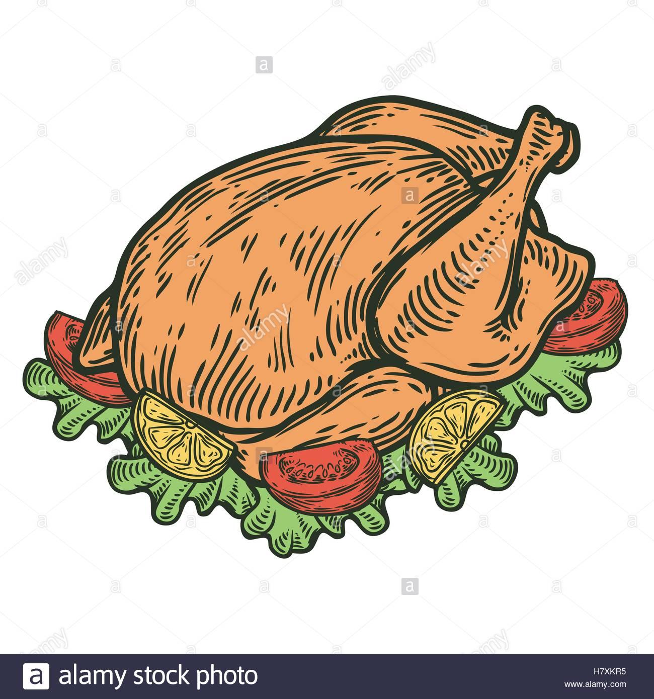A Roasted Chicken, Vector Diagram, Roast Chiken, Chicken ...  Roast Chicken Vector