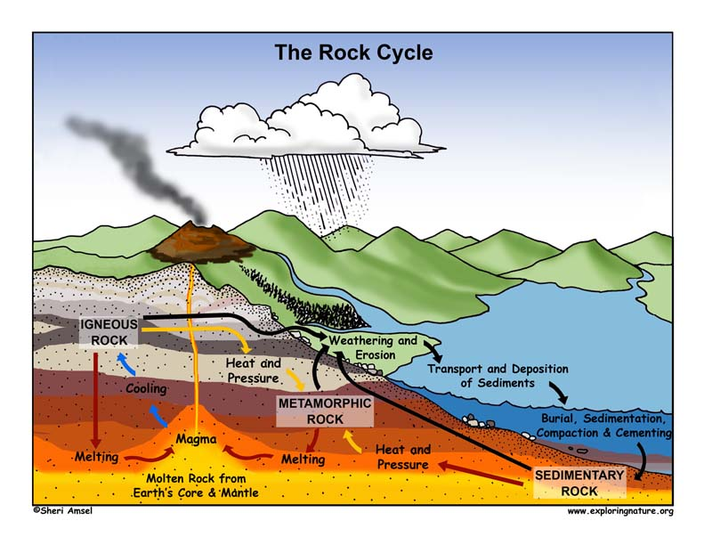 Rock cycle drawing at getdrawings free for personal use rock 791x612 rock identification amp the rock cycle ccuart