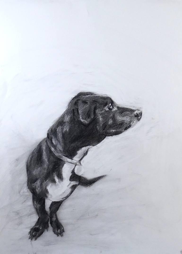 770x1074 Saatchi Art Rocket Dog Drawing By Faith Humphrey Hill