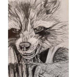videos of how to draw a raccoon