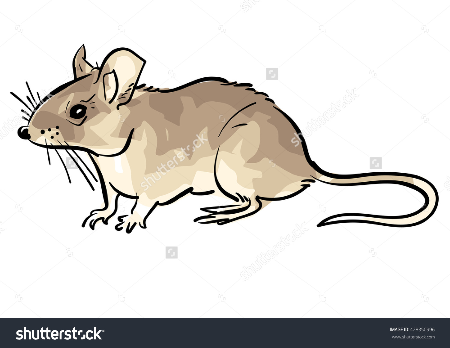1500x1161 Mouse,mouse Vector,cute Mouse,mouse Drawing,house Mouse,mouse