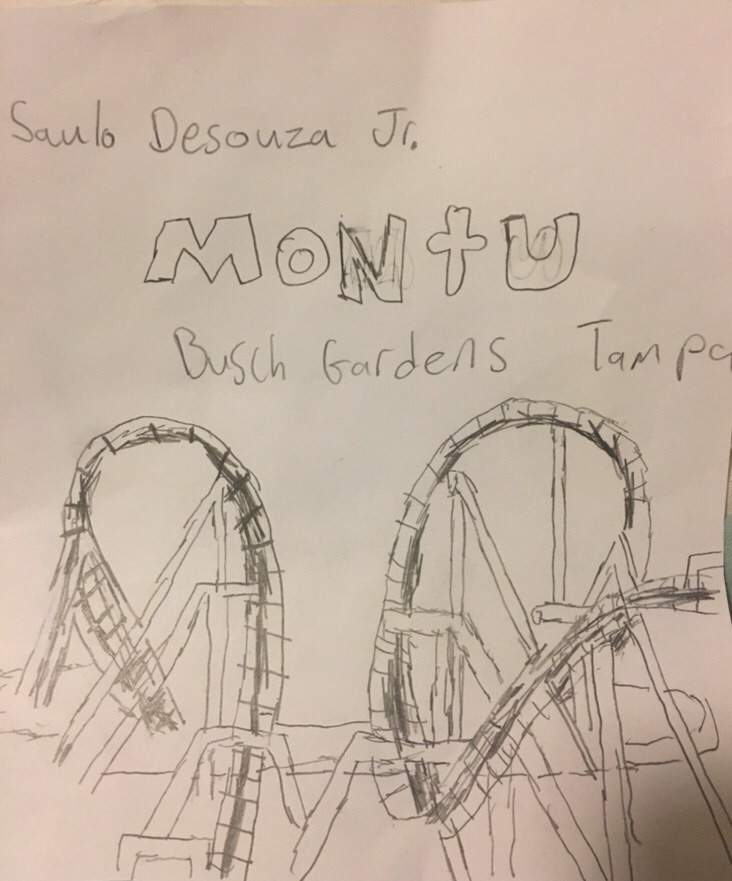 732x881 My Drawing Of Montu Rollercoaster Amino