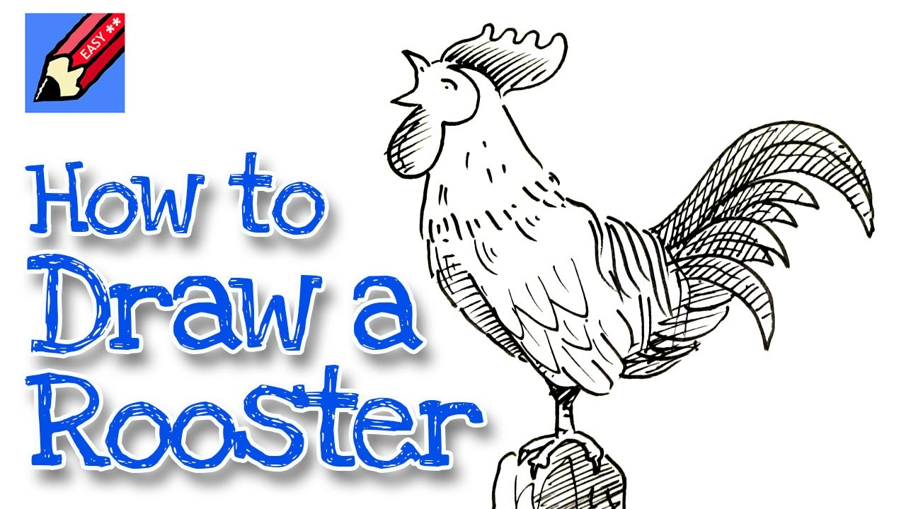 1280x720 How To Draw A Rooster Crowing Real Easy For Chinese New Year
