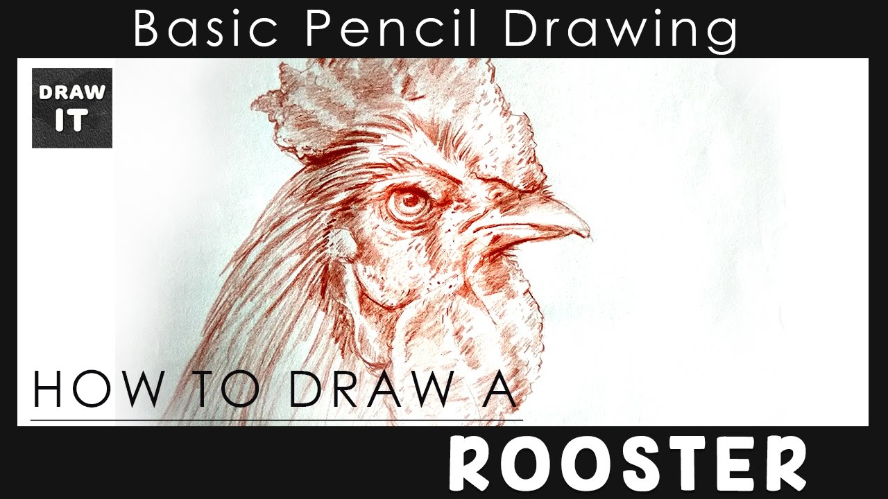 1280x720 How To Draw A Rooster Head By Water Color It