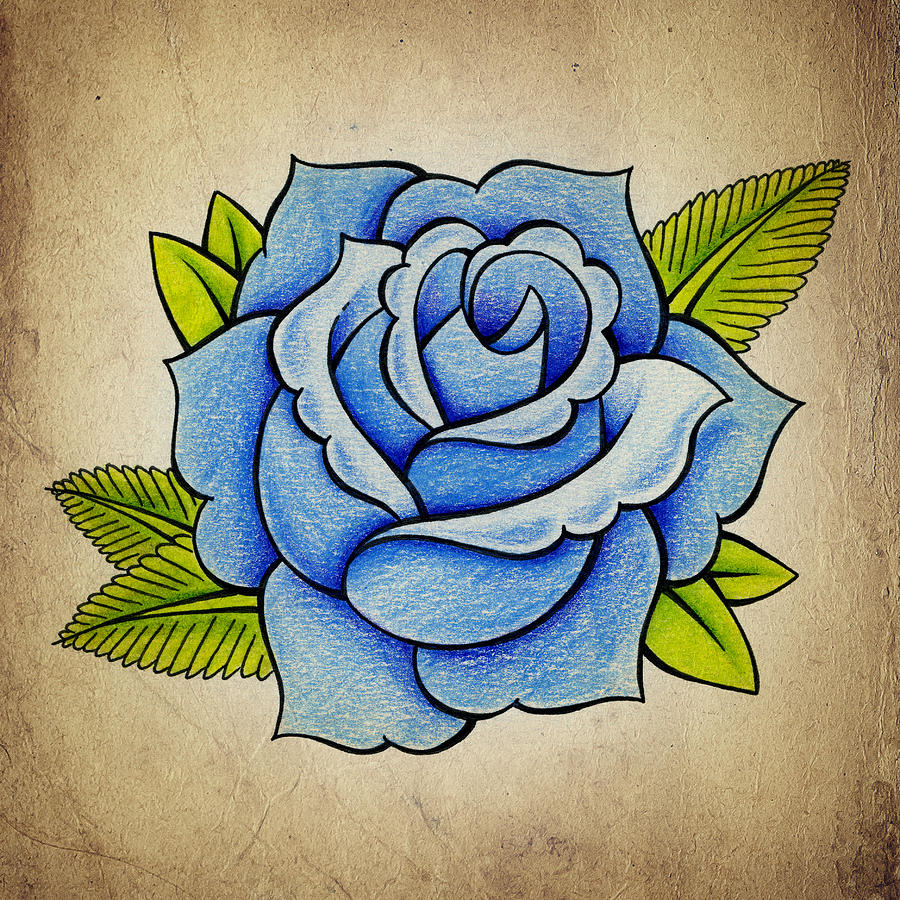 900x900 Blue Rose Drawing By Samuel Whitton