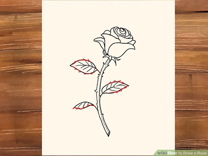 728x546 3 Ways To Draw A Rose
