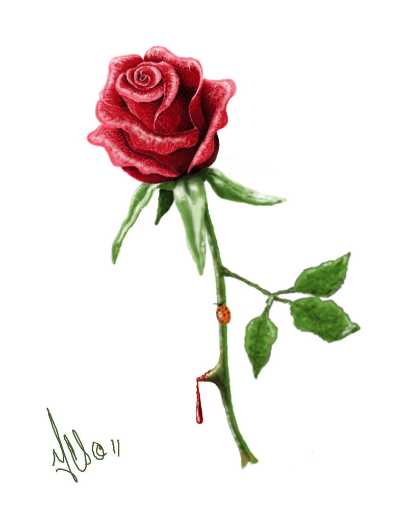 800x1000 Rose Tattoo Design By Twistedmentality On Tattoo