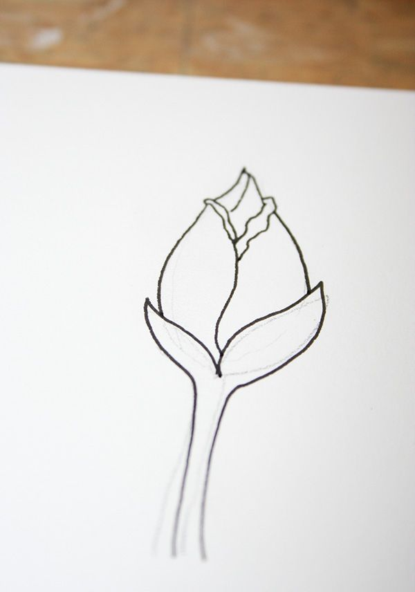 600x856 How To Draw A Rose 5 Ways Rose Buds And Artwork