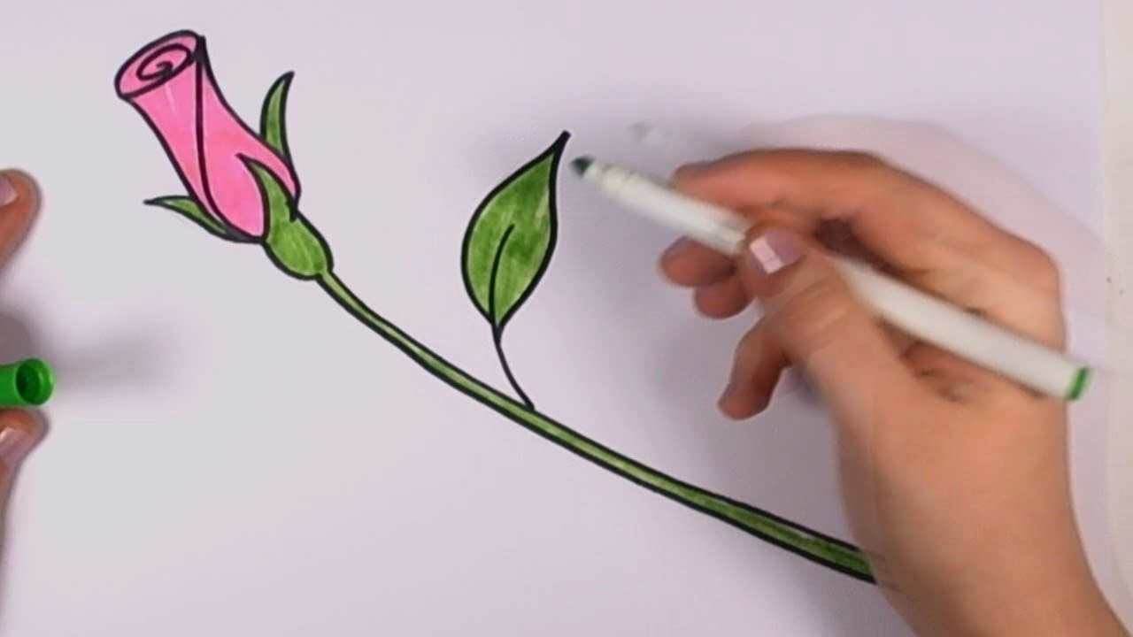 1280x720 How To Draw A Rose For Beginners
