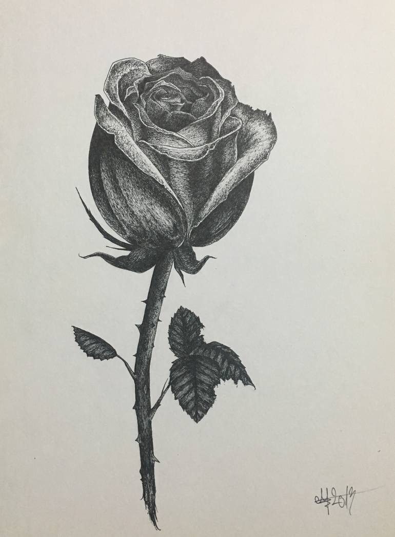 770x1046 Saatchi Art Rose Drawing By George Muscalu