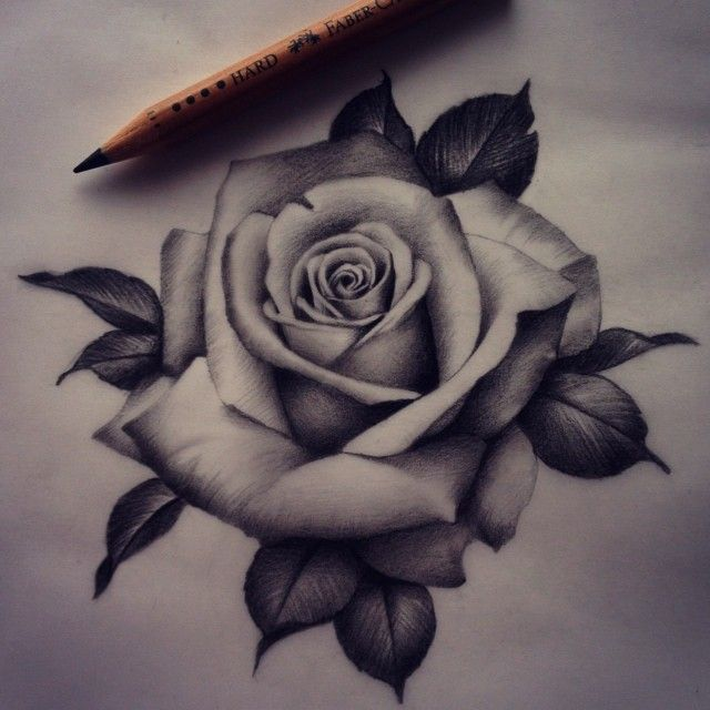 Rose Drawing Designs at GetDrawings   Free download