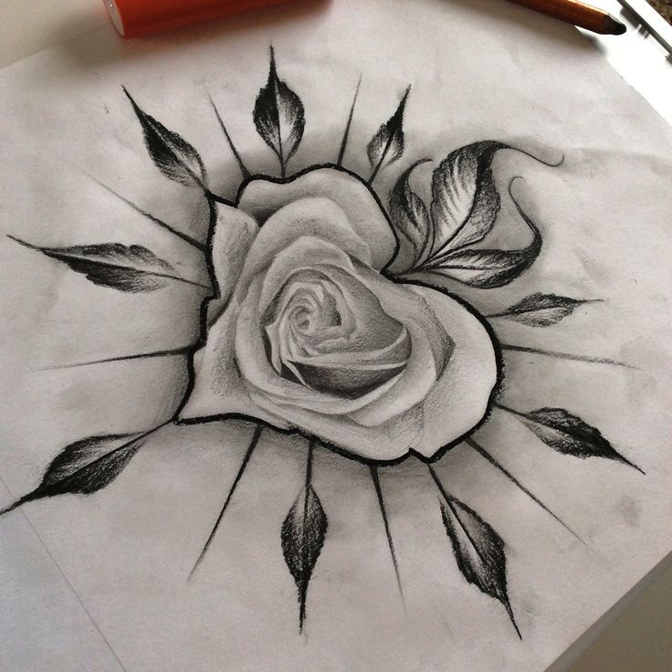 736x736 Rose Black And White Drawing Collection