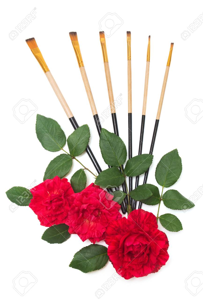 867x1300 Beautiful Red Roses Flowers And Brush For Drawing Isolated